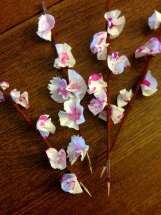 Fleurs de Cerisier Asie